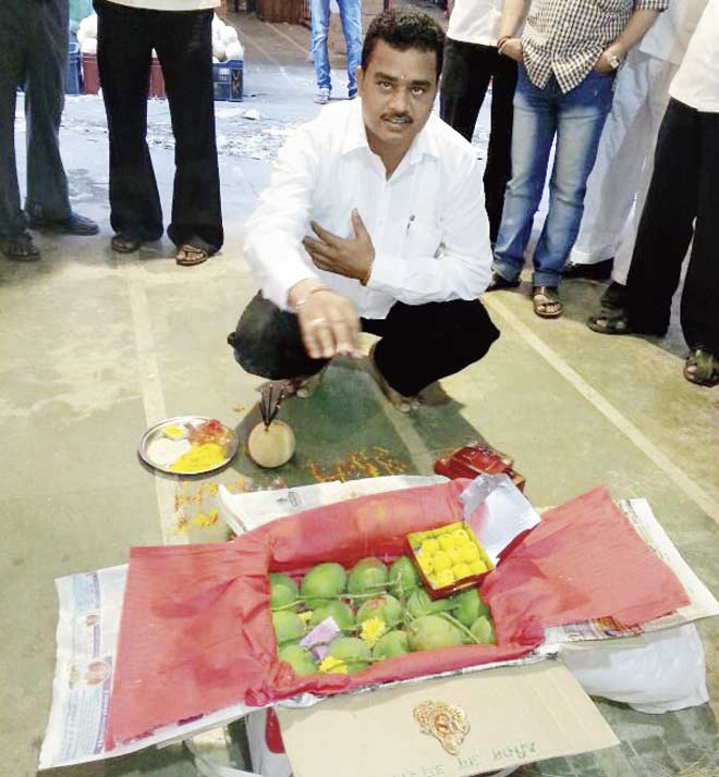 The traditional ritual of blessing the first batch of mangoes was carried out at the APMC in Vashi yesterday